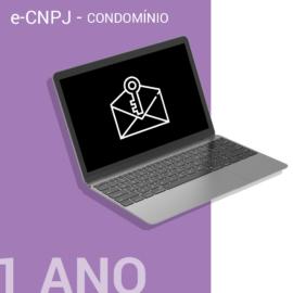 E-CNPJ A1 – 1 ANO ARMAZENADO NO COMPUTADOR - CONDOMÍNIO